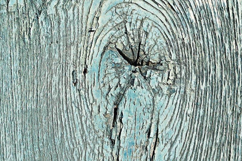 Κομψή ξύλινη σύσταση με τον κόμβο στοκ εικόνα