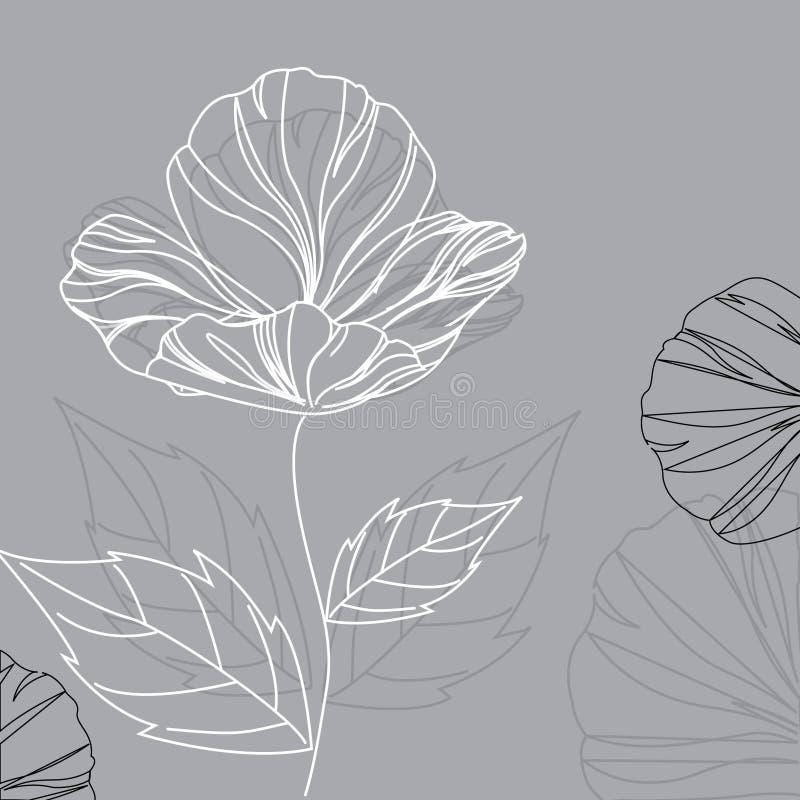 κομψή παπαρούνα λουλου&d ελεύθερη απεικόνιση δικαιώματος