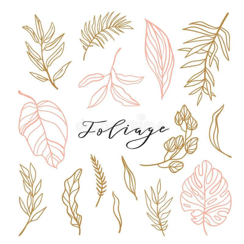 Κομψή συλλογή του φυλλώματος για τη μοντέρνη θηλυκή πρόσκληση λογότυπων ή γάμου Καθορισμένα χαριτωμένα φύλλα επίσης corel σύρετε  απεικόνιση αποθεμάτων
