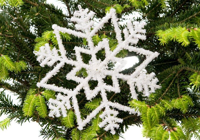 Κομψοί κλάδοι με τις διακοσμήσεις Χριστουγέννων στοκ φωτογραφίες