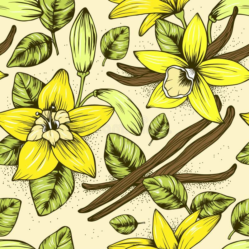 Κομψό άνευ ραφής διανυσματικό σχέδιο με το κίτρινο λουλούδι βανίλιας ελεύθερη απεικόνιση δικαιώματος