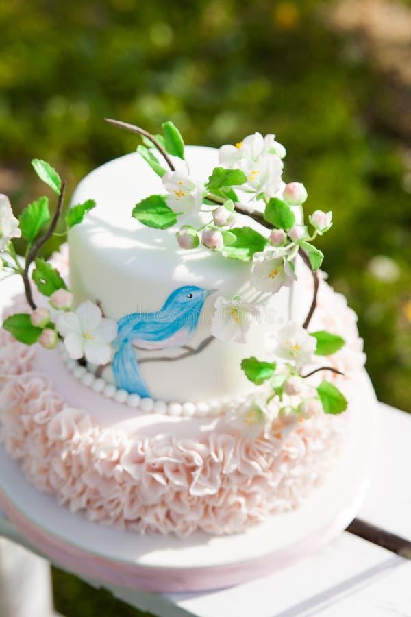 Κομψό κέικ γάμου ή γενεθλίων που διακοσμείται με τον κλάδο ανθών μήλων στοκ εικόνα με δικαίωμα ελεύθερης χρήσης