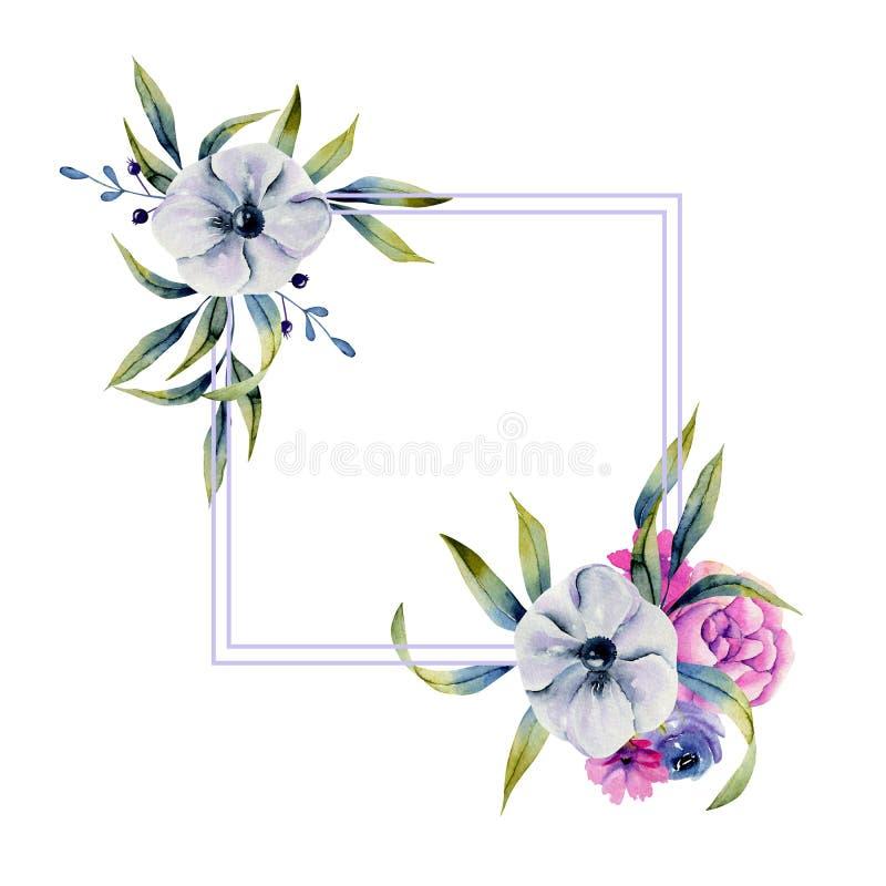 Κομψό πλαίσιο με το watercolor anemones και τα πράσινα χορτάρια απεικόνιση αποθεμάτων