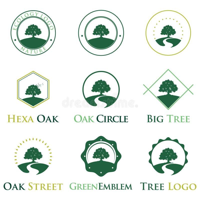 Κομψό πράσινο σύνολο δεσμών ταυτότητας λογότυπων δέντρων οικολογίας δρύινο ελεύθερη απεικόνιση δικαιώματος