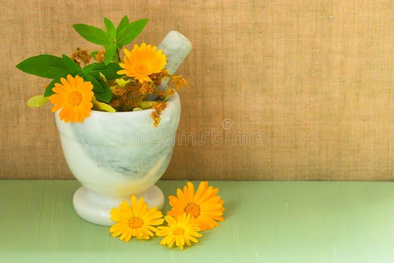 Κονίαμα με τα ιατρικά λουλούδια χορταριών του calendula, chamomile, της μέντας και βοτανικό tincture Ιατρικά χορτάρια Οργανικό co στοκ φωτογραφίες