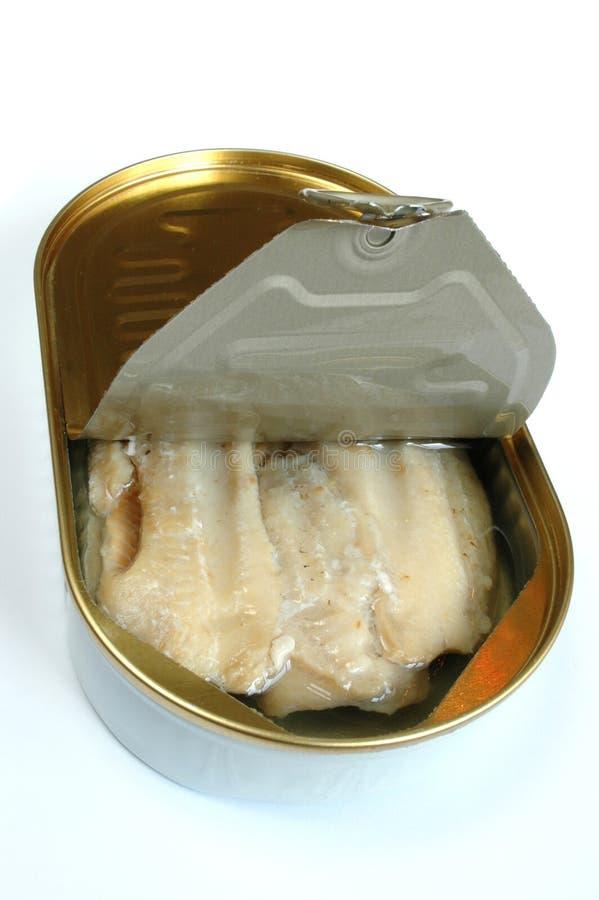 κονσερβοποιημένα ψάρια στοκ φωτογραφία με δικαίωμα ελεύθερης χρήσης
