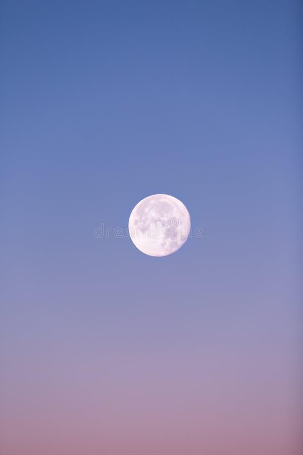 Κοντά στη πανσέληνο που αυξάνεται στο ρόδινο και μπλε χειμερινό ουρανό κρητιδογραφιών στοκ εικόνες