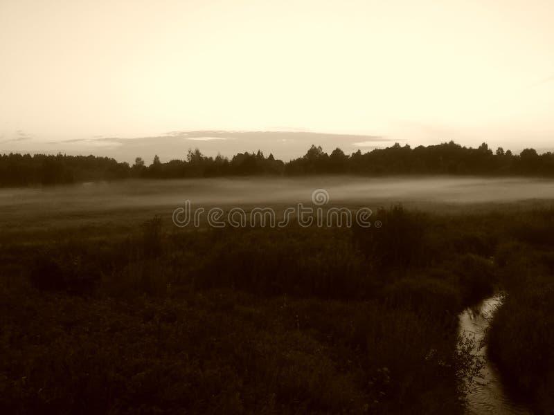 Κοντινό νερό ομίχλης στοκ φωτογραφίες