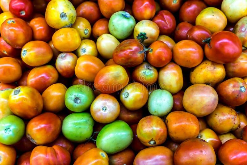 Κοντινό πλάνο νωπής πολύχρωμης ντομάτας και χωρίς υπολείμματα φυτοφαρμάκων στην αγορά βιολογικών προϊόντων στοκ εικόνα
