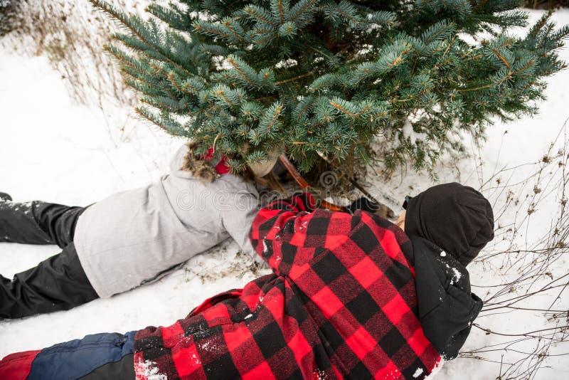 Κοπή χριστουγεννιάτικων δέντρων - οικογένεια πατέρων & κορών στοκ φωτογραφίες