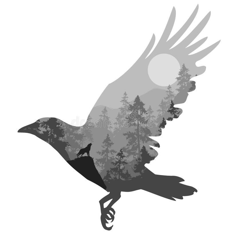 Κοράκι διανυσματική απεικόνιση