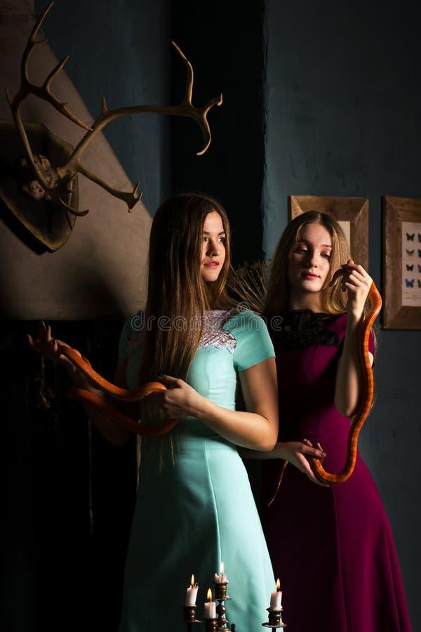 Κορίτσια με τα φίδια στοκ εικόνες