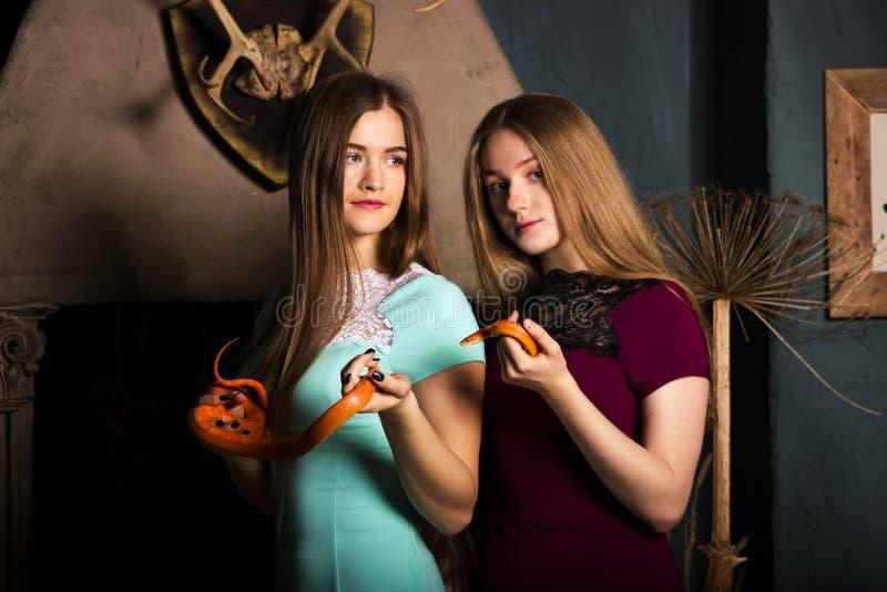 Κορίτσια με τα φίδια στοκ εικόνες με δικαίωμα ελεύθερης χρήσης
