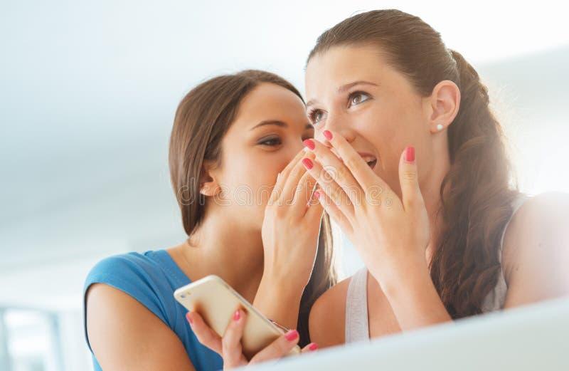 Κορίτσια που κουτσομπολεύουν και που έχουν τη διασκέδαση στοκ φωτογραφίες με δικαίωμα ελεύθερης χρήσης