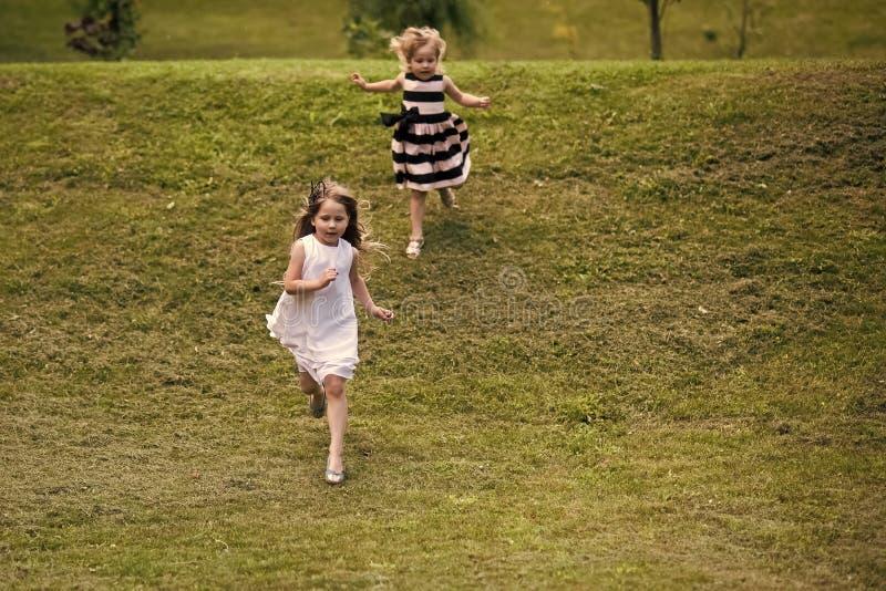 Κορίτσια που οργανώνονται από το λόφο στην πράσινη χλόη τη θερινή ημέρα στοκ εικόνα