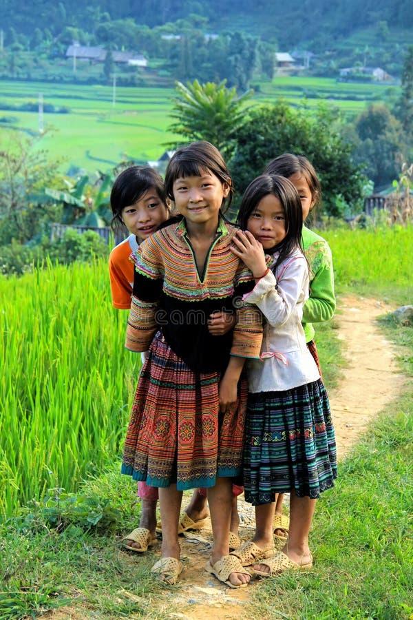 Κορίτσια H'mong που χαμογελούν στην ΤΣΕ εκτάριο στοκ φωτογραφία με δικαίωμα ελεύθερης χρήσης