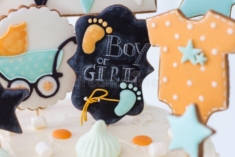Κορίτσι ή αγόρι στοκ εικόνες