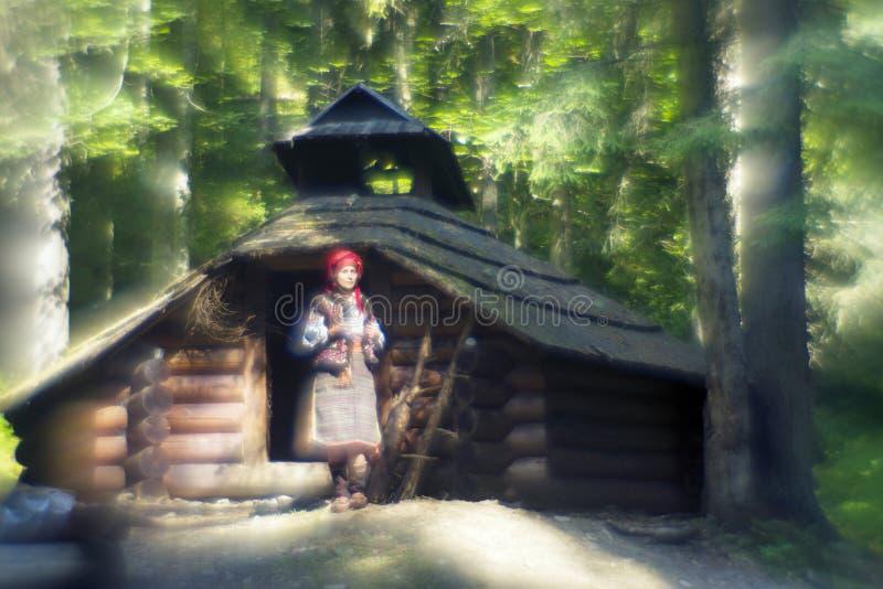 Κορίτσι - βουνά διακοσμήσεων στοκ εικόνα