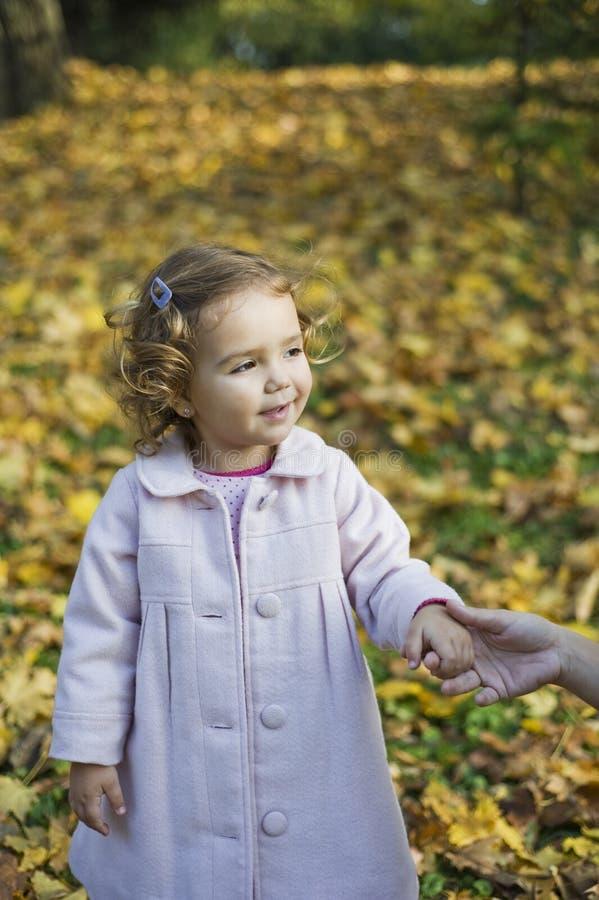 Download κορίτσι ευτυχές λίγα στοκ εικόνα. εικόνα από φύλλο, χρώματα - 17058483