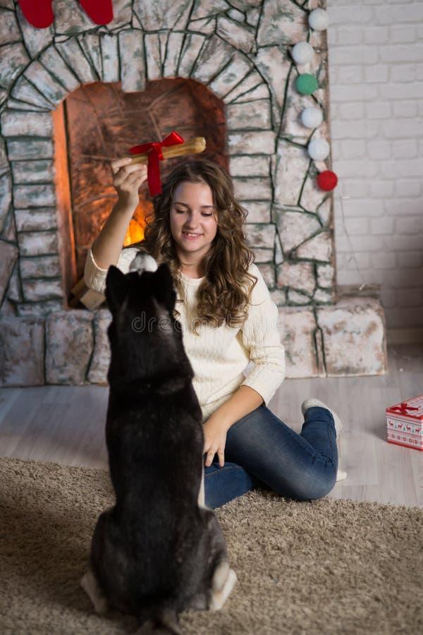 Κορίτσι εφήβων με το σκυλί σε ένα δωμάτιο για τα Χριστούγεννα στοκ εικόνα