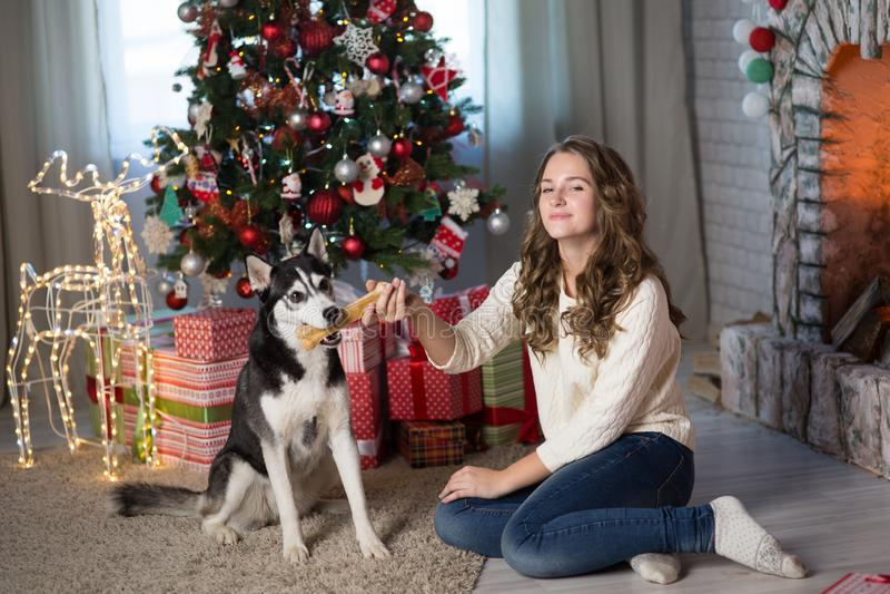 Κορίτσι εφήβων με το σκυλί σε ένα δωμάτιο για τα Χριστούγεννα στοκ εικόνες με δικαίωμα ελεύθερης χρήσης