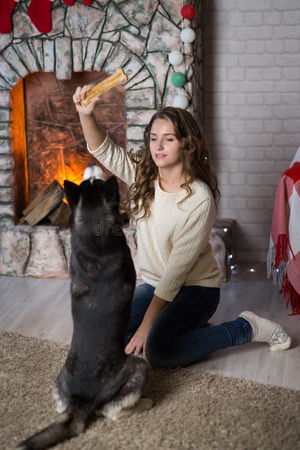Κορίτσι εφήβων με το σκυλί σε ένα δωμάτιο για τα Χριστούγεννα στοκ φωτογραφία με δικαίωμα ελεύθερης χρήσης