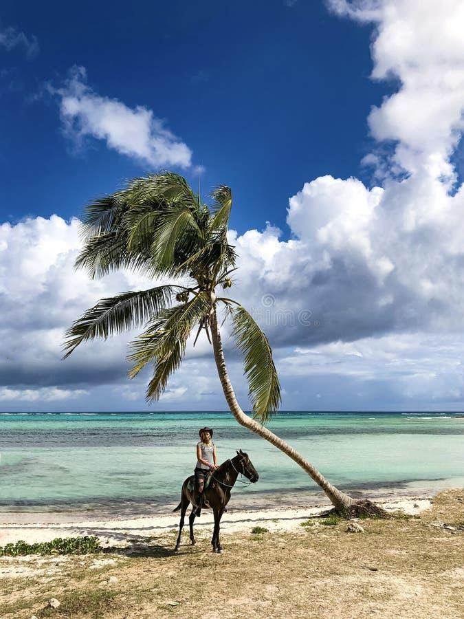 Κορίτσι κάουμποϋ σε ένα άλογο κάτω από έναν φοίνικα στοκ φωτογραφίες με δικαίωμα ελεύθερης χρήσης