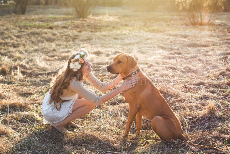 Κορίτσι και καφετί σκυλί στοκ εικόνα