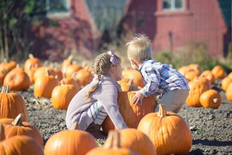 Κορίτσι και μικρό παιδί που ανυψώνουν τη μεγάλη κολοκύθα στο αγρόκτημα στοκ εικόνες