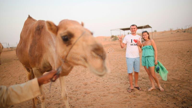 Κορίτσι και ο τύπος με την καμήλα Έρημος στο Αμπού Ντάμπι, Ηνωμένα Αραβικά Εμιράτα στοκ εικόνα με δικαίωμα ελεύθερης χρήσης