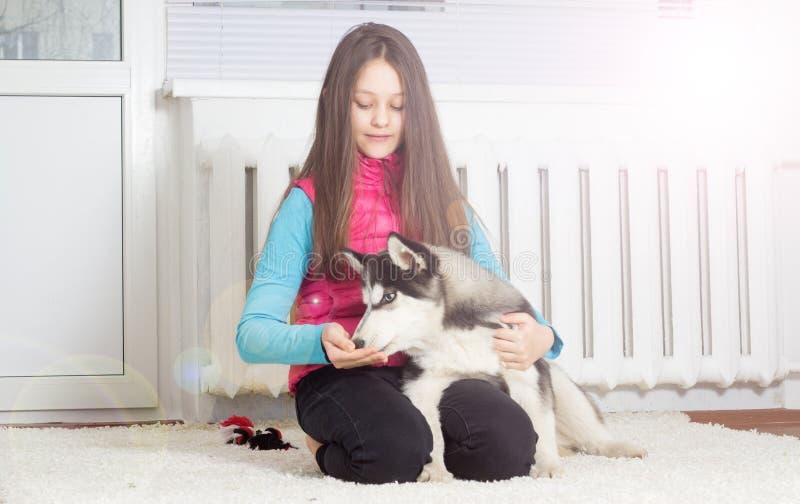 Κορίτσι και σκυλί στοκ εικόνες με δικαίωμα ελεύθερης χρήσης