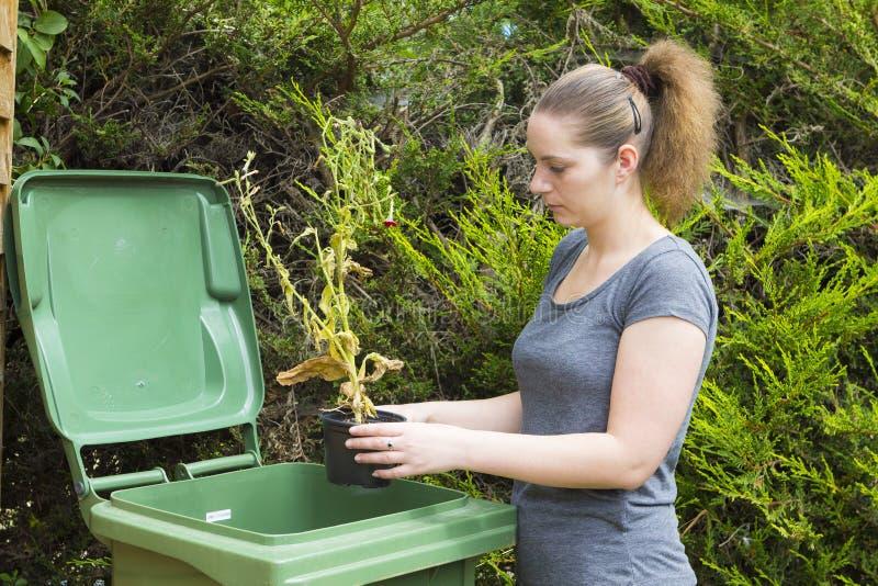 Κορίτσι κοντά στο εμπορευματοκιβώτιο για τα απόβλητα κήπων στοκ φωτογραφία