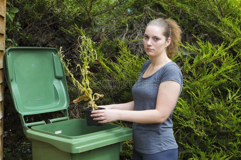 Κορίτσι κοντά στο εμπορευματοκιβώτιο για τα απόβλητα κήπων στοκ φωτογραφία με δικαίωμα ελεύθερης χρήσης