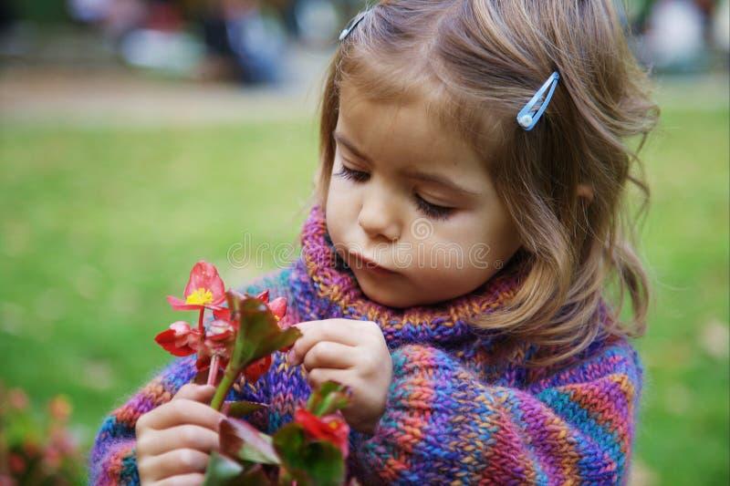 κορίτσι λουλουδιών λίγ&a στοκ εικόνες με δικαίωμα ελεύθερης χρήσης