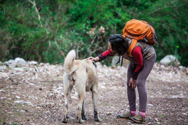 Κορίτσι με ένα σακίδιο πλάτης που ένα σκυλί στοκ φωτογραφίες με δικαίωμα ελεύθερης χρήσης