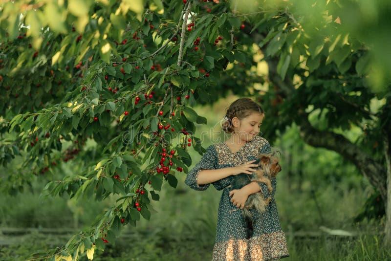 Κορίτσι με ένα σκυλί στον κήπο στοκ φωτογραφία με δικαίωμα ελεύθερης χρήσης