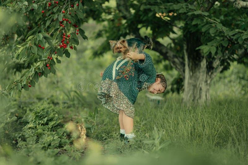Κορίτσι με ένα σκυλί στον κήπο στοκ εικόνα