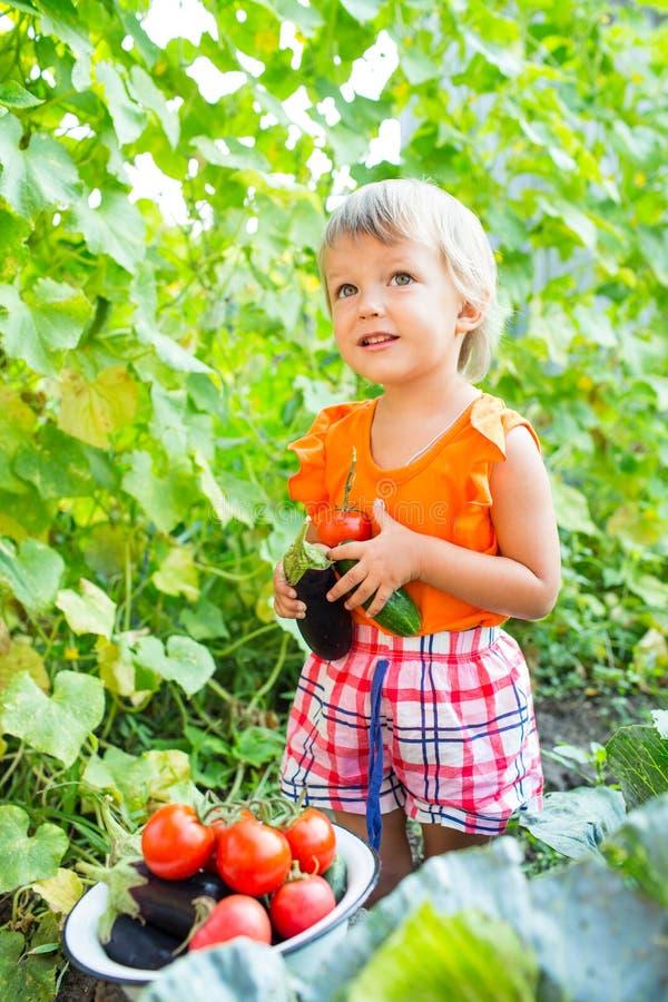 Κορίτσι με τα λαχανικά συγκομιδών στοκ εικόνα με δικαίωμα ελεύθερης χρήσης