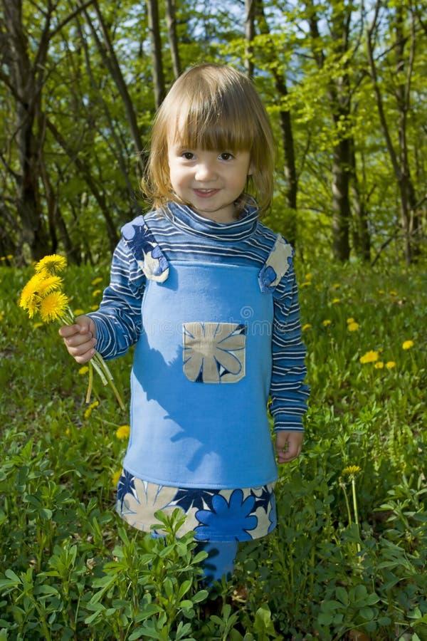 Κορίτσι με τα λουλούδια πικραλίδων στοκ εικόνες με δικαίωμα ελεύθερης χρήσης
