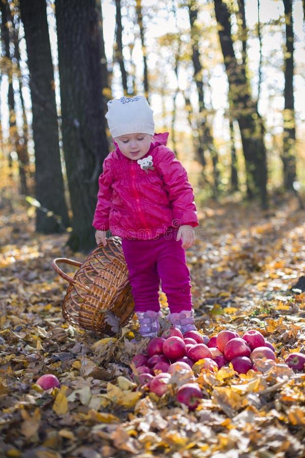 Κορίτσι με τα μήλα στοκ φωτογραφίες με δικαίωμα ελεύθερης χρήσης