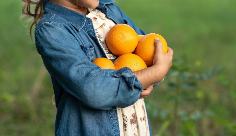 Κορίτσι με τα πορτοκάλια στον πορτοκαλή οπωρώνα Όμορφες αδελφές με το οργανικό πορτοκάλι στον κήπο Έννοια συγκομιδών Κήπος, έφηβο στοκ φωτογραφίες