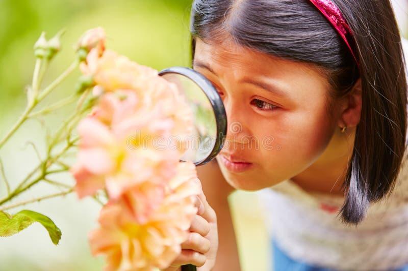 Κορίτσι με την ενίσχυση - γυαλί στοκ φωτογραφίες