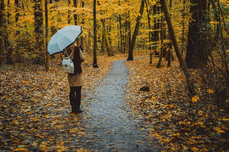 Κορίτσι με την ομπρέλα στη φθινοπωρινή ζωηρόχρωμη δασική πορεία στοκ φωτογραφίες
