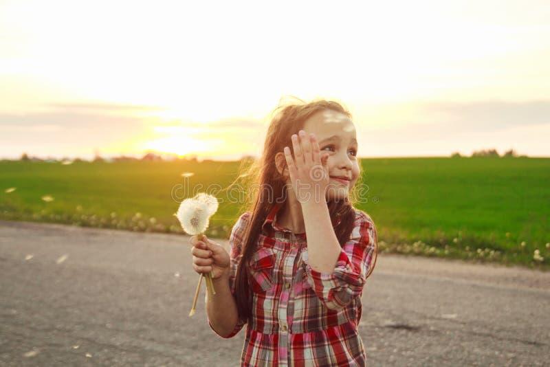 Κορίτσι με την πικραλίδα στον τομέα στοκ εικόνες με δικαίωμα ελεύθερης χρήσης