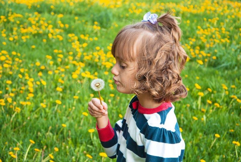 Κορίτσι με την πικραλίδα στοκ εικόνες