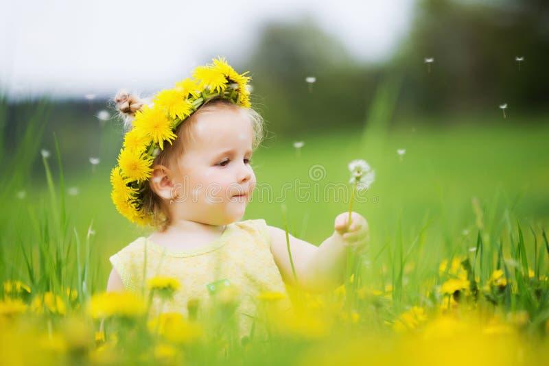Κορίτσι παιδιών μεταξύ των πικραλίδων στοκ φωτογραφία με δικαίωμα ελεύθερης χρήσης