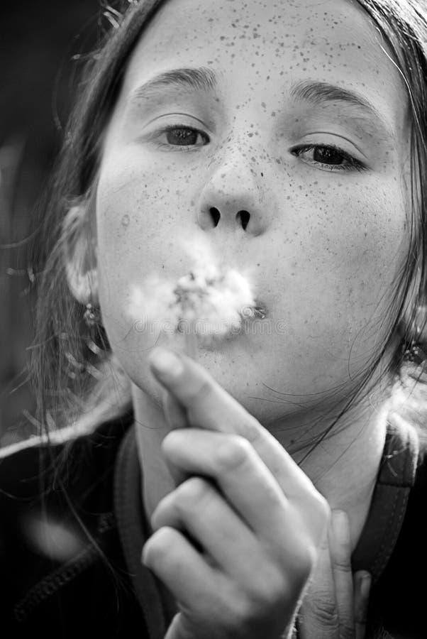 κορίτσι πικραλίδων στοκ εικόνα