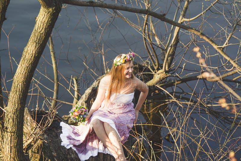 Κορίτσι που εγκαθιστά στο δέντρο στοκ εικόνες με δικαίωμα ελεύθερης χρήσης