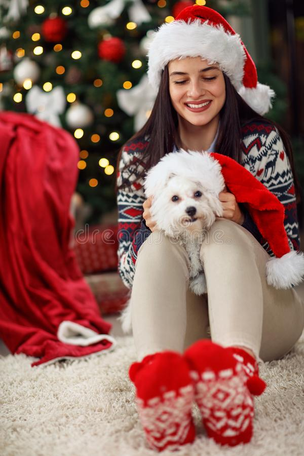 Κορίτσι που κρατά ένα σκυλί κουταβιών χριστουγεννιάτικου δώρου στοκ φωτογραφία
