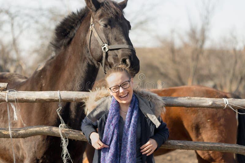 Κορίτσι που κτυπά ένα thoroughbred άλογο στη μάνδρα για τη μάντρα στοκ εικόνες με δικαίωμα ελεύθερης χρήσης